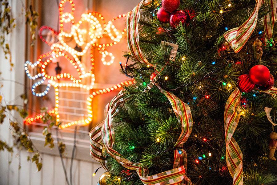 Geniet van de kerst bij Het Boskamp